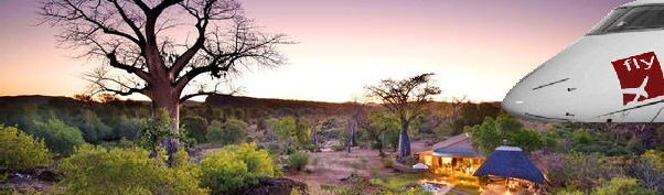 Fly to the Kruger National Park with flySerra Private Jet and Air Charter Brokers by booking an African Bush Charter today.